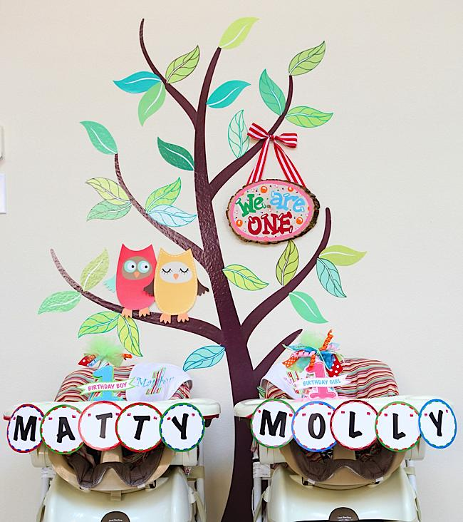 Twin Owls 1st Birthday Party
