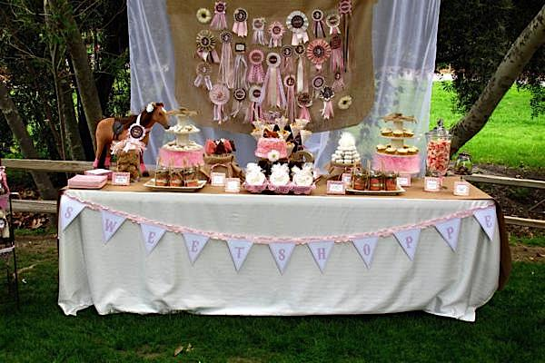 Outdoors Baby Shower Decoration Ideas Easy Outside Baby Shower