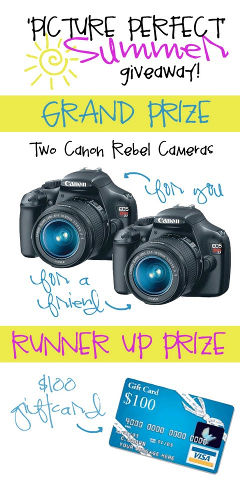 Picture Perfect Camera Giveaway