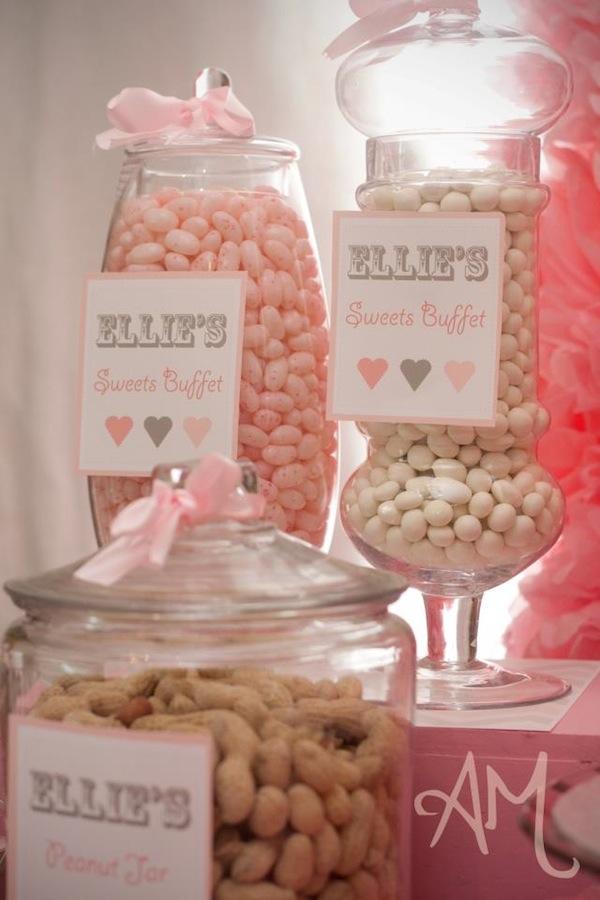 ... Party Ideas Pink Elephant 1st Birthday Party  Karas Party Ideas