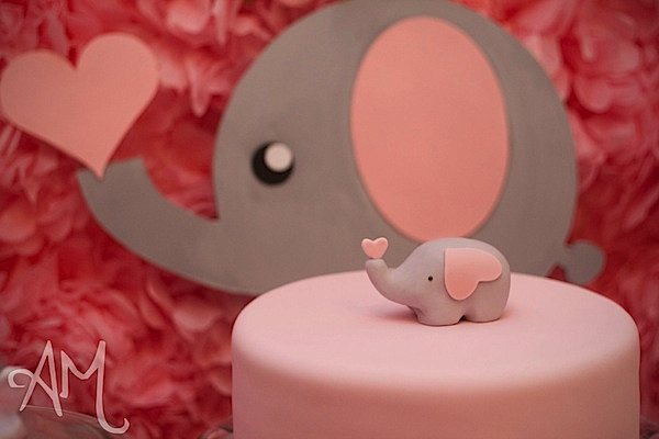 Karas Party Ideas Pink Elephant 1st Birthday