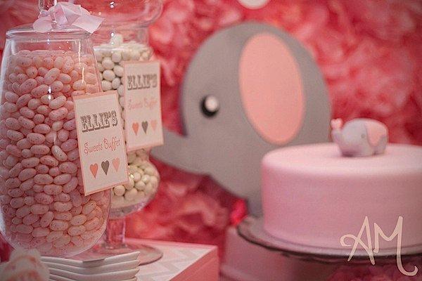 Karas Party Ideas Pink Elephant 1st Birthday