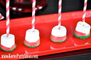 Christmas Holiday Party via Kara's Party Ideas- www.KarasPartyIdeas.com-12