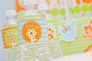 Woodlandowlboysfirstbirthdaydesserttable-WaterBottles_zps272539ac_600x400