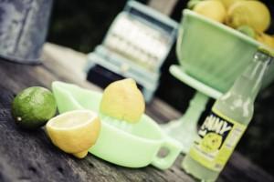 lemon7-154_600x400