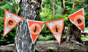 Dukes of Hazard Birthday Party Banner Pennant