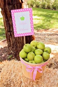 Apple of my eye themed birthday party via Kara's Party Ideas karaspartyideas.com #girl #party #idea #apple #pink #birthday-2