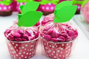 Apple of my eye themed birthday party via Kara's Party Ideas karaspartyideas.com #girl #party #idea #apple #pink #birthday-22