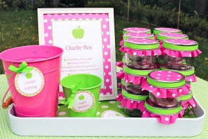 Apple of my eye themed birthday party via Kara's Party Ideas karaspartyideas.com #girl #party #idea #apple #pink #birthday-8