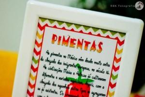 Mexican Fiesta Party via Kara's Party IDeas karaspartyideas.com #mexican #fiesta #party #spanish #latin #dancing #cupcakes #margarita #ideas #idea #cake #cinco #de #mayo (40)
