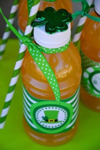 St Patrick's Day Party FREE PRINTABLES via Kara's Party Ideas karaspartyideas.com #free #printables #tags #st #patrick's #day #party #ideas #gifts #shop (45)