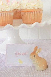 Seersucker & Bow Tie Easter Party or baby shower idea via Kara's Party Ideas karaspartyideas.com Bunny Birthday First Easter Party Supplies (6)