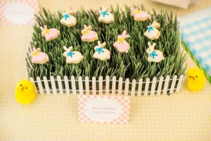 Easter Peter Rabbit Party for Pottery Barn Kids via Kara's Party Ideas karaspartyideas.com #Easter #Pottery #barn #kids #party #ideas #idea #spring #cake #decorations #birthday #celebration (106)
