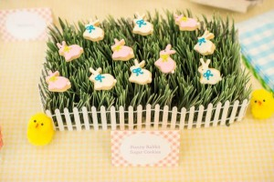 Easter Peter Rabbit Party for Pottery Barn Kids via Kara's Party Ideas karaspartyideas.com #Easter #Pottery #barn #kids #party #ideas #idea #spring #cake #decorations #birthday #celebration (105)