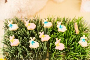 Easter Peter Rabbit Party for Pottery Barn Kids via Kara's Party Ideas karaspartyideas.com #Easter #Pottery #barn #kids #party #ideas #idea #spring #cake #decorations #birthday #celebration (99)