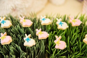 Easter Peter Rabbit Party for Pottery Barn Kids via Kara's Party Ideas karaspartyideas.com #Easter #Pottery #barn #kids #party #ideas #idea #spring #cake #decorations #birthday #celebration (16)