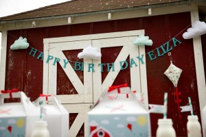 Vintage Barnyard + Kite Party via Kara's Party Ideas | KarasPartyIdeas.com #barnyard #kite #birthday #party (30)