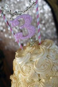 Cake Close-up_600x896
