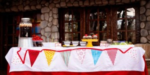 Vintage Donald Duck County Fair Party via Kara's Party Ideas | KarasPartyIdeas.com #vintage #donald #duck #county #fair #party (66)