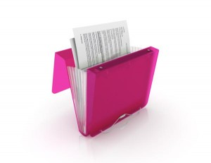 Duo Binder Organizer Folder 3 ring Filing system via Kara's Party Ideas | KarasPartyIdeas.com (11)