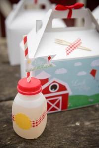 Vintage Barnyard + Kite Party via Kara's Party Ideas | KarasPartyIdeas.com #barnyard #kite #birthday #party (24)