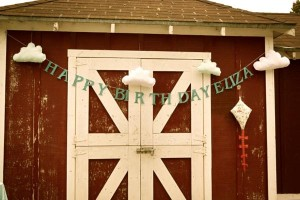 Vintage Barnyard + Kite Party via Kara's Party Ideas | KarasPartyIdeas.com #barnyard #kite #birthday #party (20)
