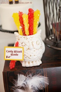 Harry Potter themed birthday party idea via Kara's Party Ideas | KarasPartyIdeas.com #harry #potter #decorations #printables #invitation #party #supplies #idea #cake #cupcakes #activities (63)