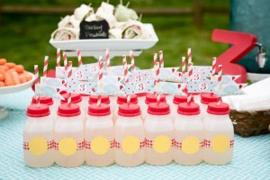 Vintage Barnyard + Kite Party via Kara's Party Ideas | KarasPartyIdeas.com #barnyard #kite #birthday #party (19)