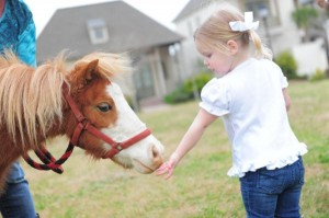 Pink pony themed birthday party via Kara's Party Ideas KarasPartyIdeas.com #pony #horse #birthday #party (11)