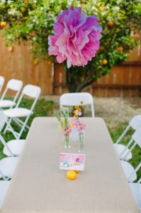 Pink Lemonade Party via Kara's Party Ideas | KarasPartyIdeas.com #pink #lemonade #summer #party #ideas (21)