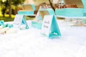 Baby & Co. Tiffany's Baby Shower via Kara's Party Ideas | KarasPartyIdeas.com #tiffanys #blue #baby #shower #party #ideas #favors (10)