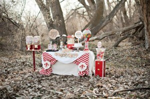 Vintage Circus / Carnival Party via Kara's Party Ideas | KarasPartyIdeas.com #vintage #carnival #circus #girl #boy #party #ideas #supplies (46)