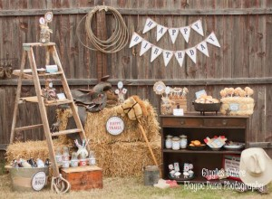Cowboy Birthday Party_600x440