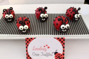 Lovebug 2nd Birthday Party via Kara's Party Ideas | Kara'sPartyIdeas.com #lovebug #ladybug #2nd #birthday #party #ideas #supplies #decorations (14)
