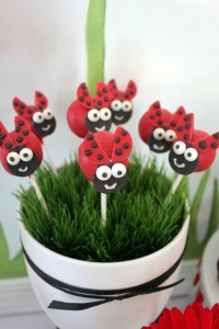 Lovebug 2nd Birthday Party via Kara's Party Ideas | Kara'sPartyIdeas.com #lovebug #ladybug #2nd #birthday #party #ideas #supplies #decorations (16)