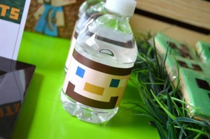 Vintage Minecraft Party via Kara's Party Ideas | KarasPartyIdeas.com #vintage #minecraft #mine #craft #video #game #party #ideas (17)
