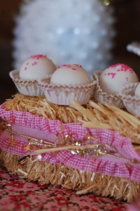 Cowgirl Princess Fifth Birthday Party via Kara's Party Ideas | Kara'sPartyIdeas.com #cowgirl #princess #birthday #party #ideas #supplies #decorations (10)
