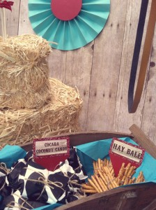 Vintage Cowboy First Birthday Party via Kara's Party Ideas | Kara'sPartyIdeas.com #vintage #cowboy #first #birthday #party #supplies #ideas (4)