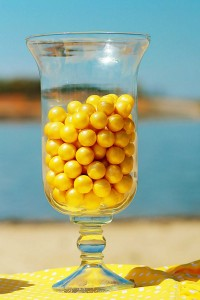 Yellow Polka Dot Bikini Party via Kara's Party Ideas | Kara'sPartyIdeas.com #yellow #polka #dot #bikini #party #supplies #ideas (19)