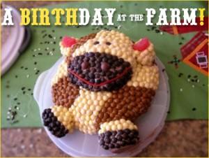 farmbirthdayparty_5