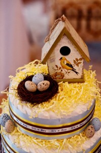 Birds and Bees Baby Shower via KarasPartyIdeas.com #BirdsAndBees #AboutToHatch #BabyShower #party #planning #idea #decorations (70)