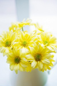 Little Daisy Party via Kara's Party Ideas | Kara'sPartyIdeas.com #Daisy #Party #Baby #Shower #Idea (5)