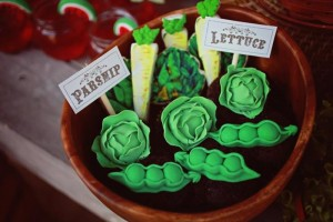 Farmer's Market Party via Kara's Party Ideas | Kara'sPartyIdeas.com #farming #party #idea #boy #girl (21)
