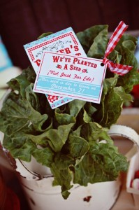 Farmer's Market Party via Kara's Party Ideas | Kara'sPartyIdeas.com #farming #party #idea #boy #girl (18)