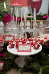 #woodland #birthday #party #decorations #Mushroom #cake #idea #planning (29)