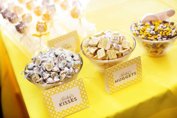Owl Themed Yellow And Gray Baby Shower Via Karau0027s Party Ideas |  Karau0027sPartyIdeas.com #party #supplies #ideas (8)