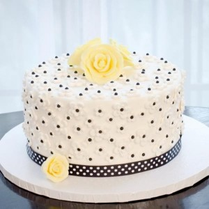 Ella Vanilla Cake Kits PROMO CODE via KarasPartyIdeas.com #CakeKits #EllaVanilla #PartySupplies (6)