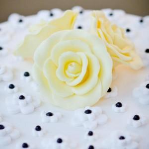 Ella Vanilla Cake Kits PROMO CODE via KarasPartyIdeas.com #CakeKits #EllaVanilla #PartySupplies (5)