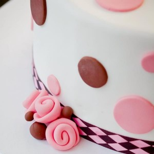Ella Vanilla Cake Kits PROMO CODE via KarasPartyIdeas.com #CakeKits #EllaVanilla #PartySupplies (3)