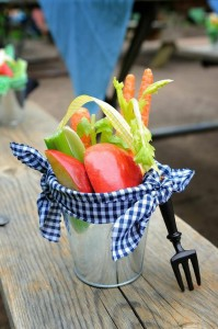 Antique Vintage Farm Party via Kara's Party Ideas | Kara'sPartyIdeas.com #Barnyard #PartyIdeas #Supplies (3)